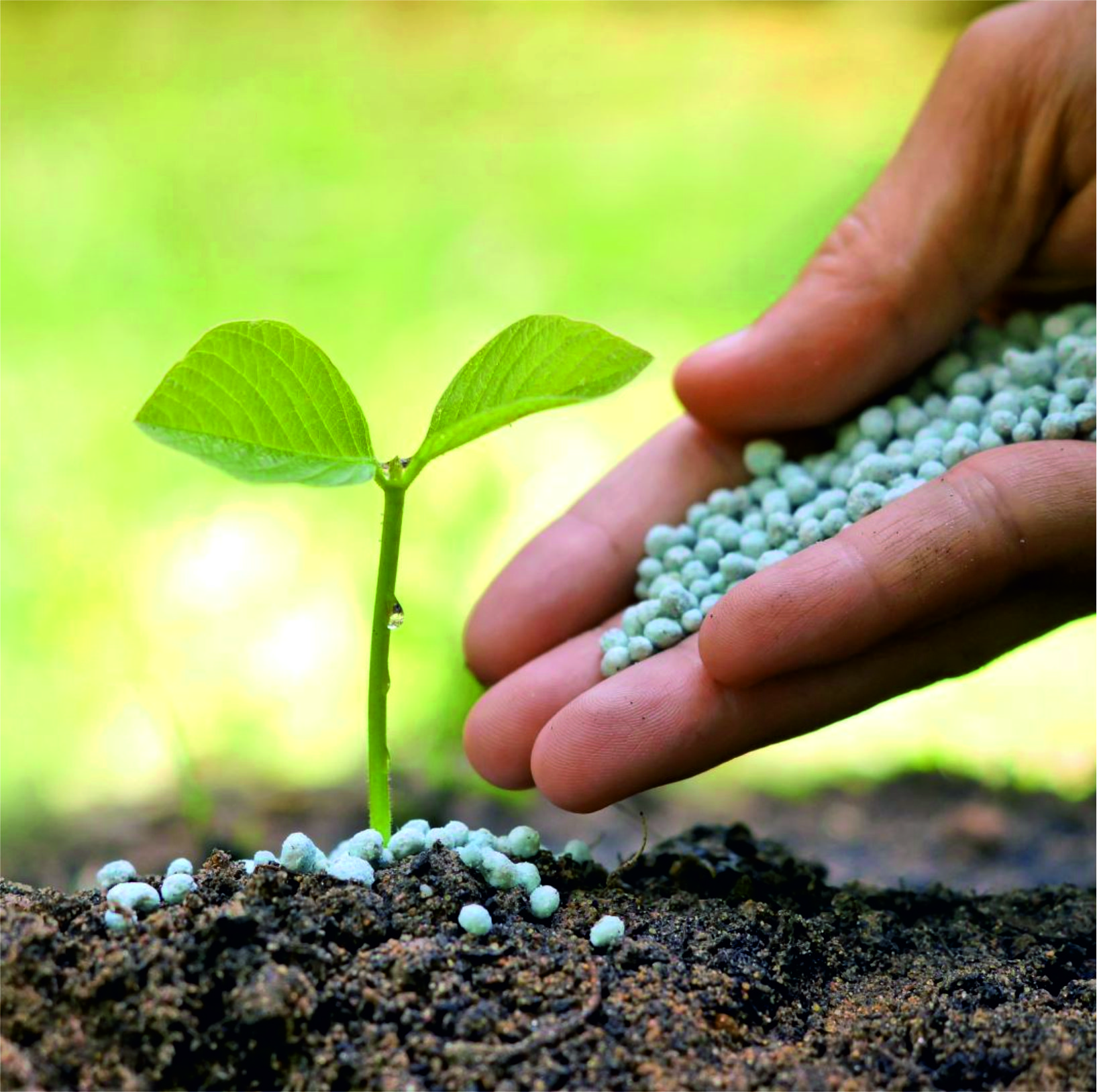 agrodor fertilizanti
