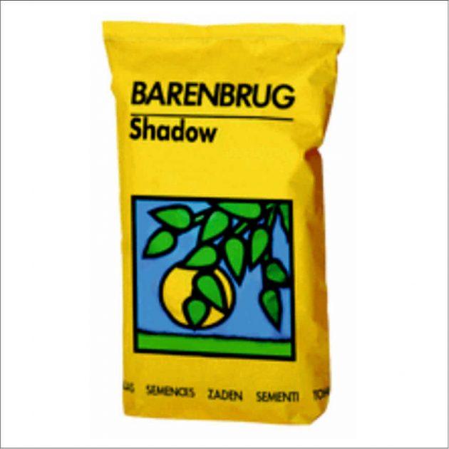 Shadow Barenbrug seminte de gazon Agrodor